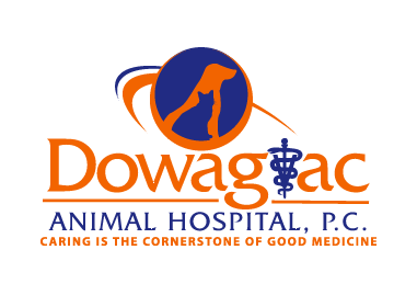 Dowagiac Animal Hospital